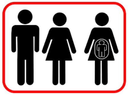 Enfant conçu par gestation pour autrui (GPA) : le parent d'intention peut-il adopter ?